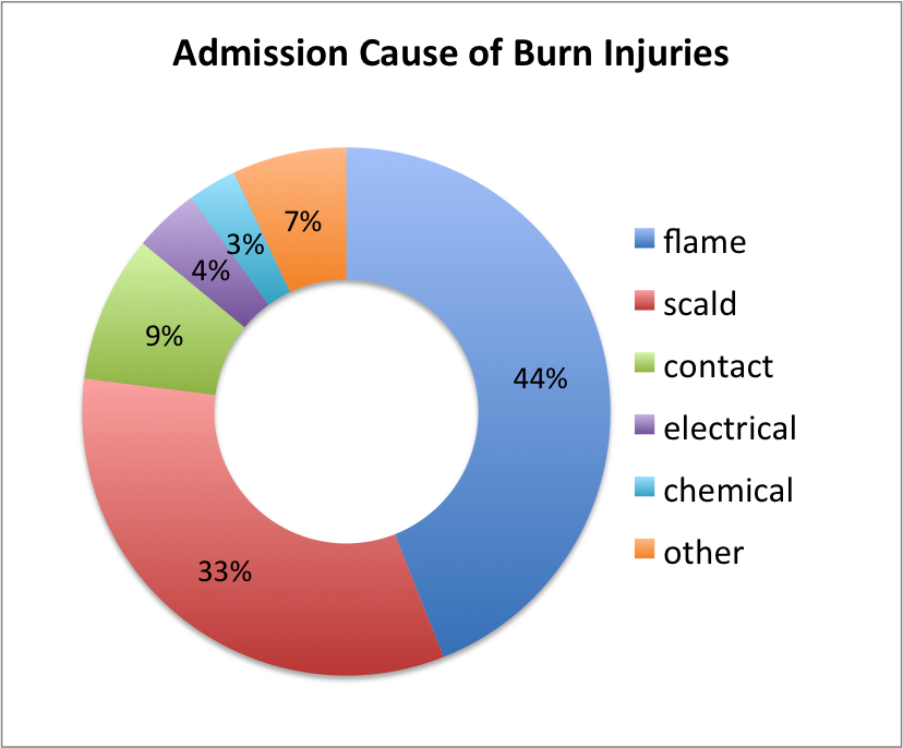 chart showing admission cause of burn injuries