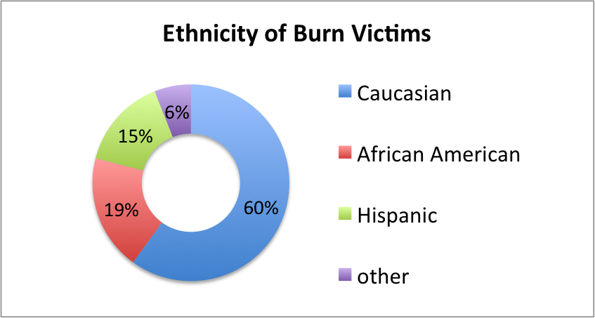 graph showing ethnicity of burn victims in US